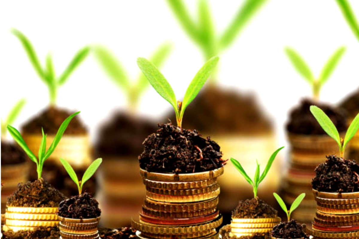 How to Access Funds for Agribusiness