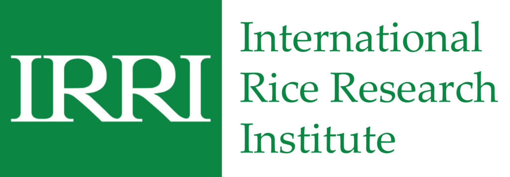 AATF partners IRRI to Scale Hybrid Rice Production in Africa