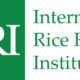 IRRI partners ATTF to scale hybrid rice production in Africa