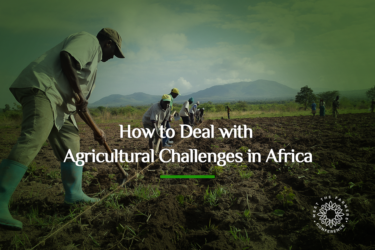 Dealing with Agricultural Challenges in Africa
