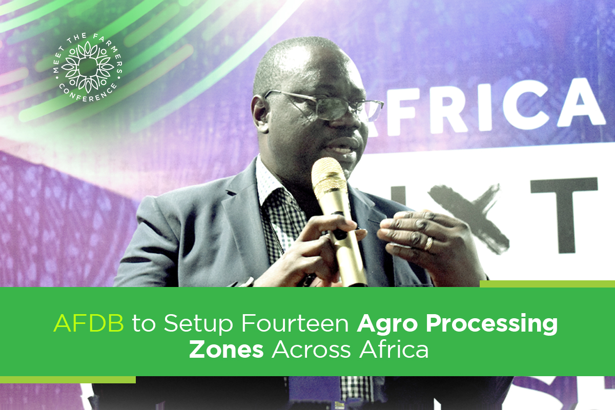 AFDB to Setup Fourteen Agro Processing Zones Across Africa