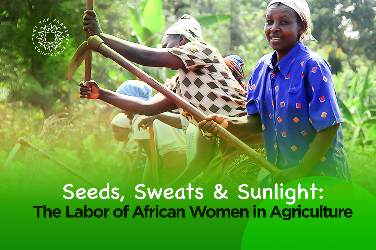 Seeds, Sweats & Sunlight – the Labor of African Women in Agriculture
