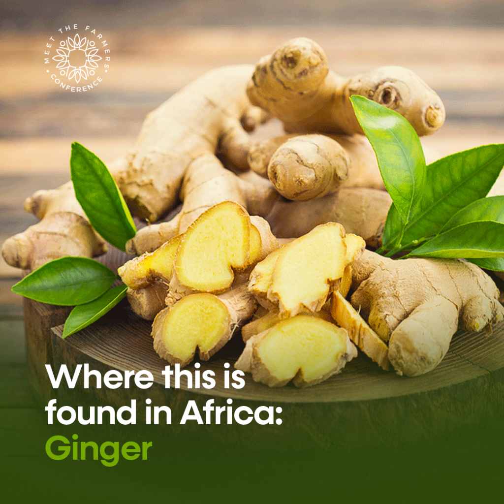 Where this is found in Africa: Ginger