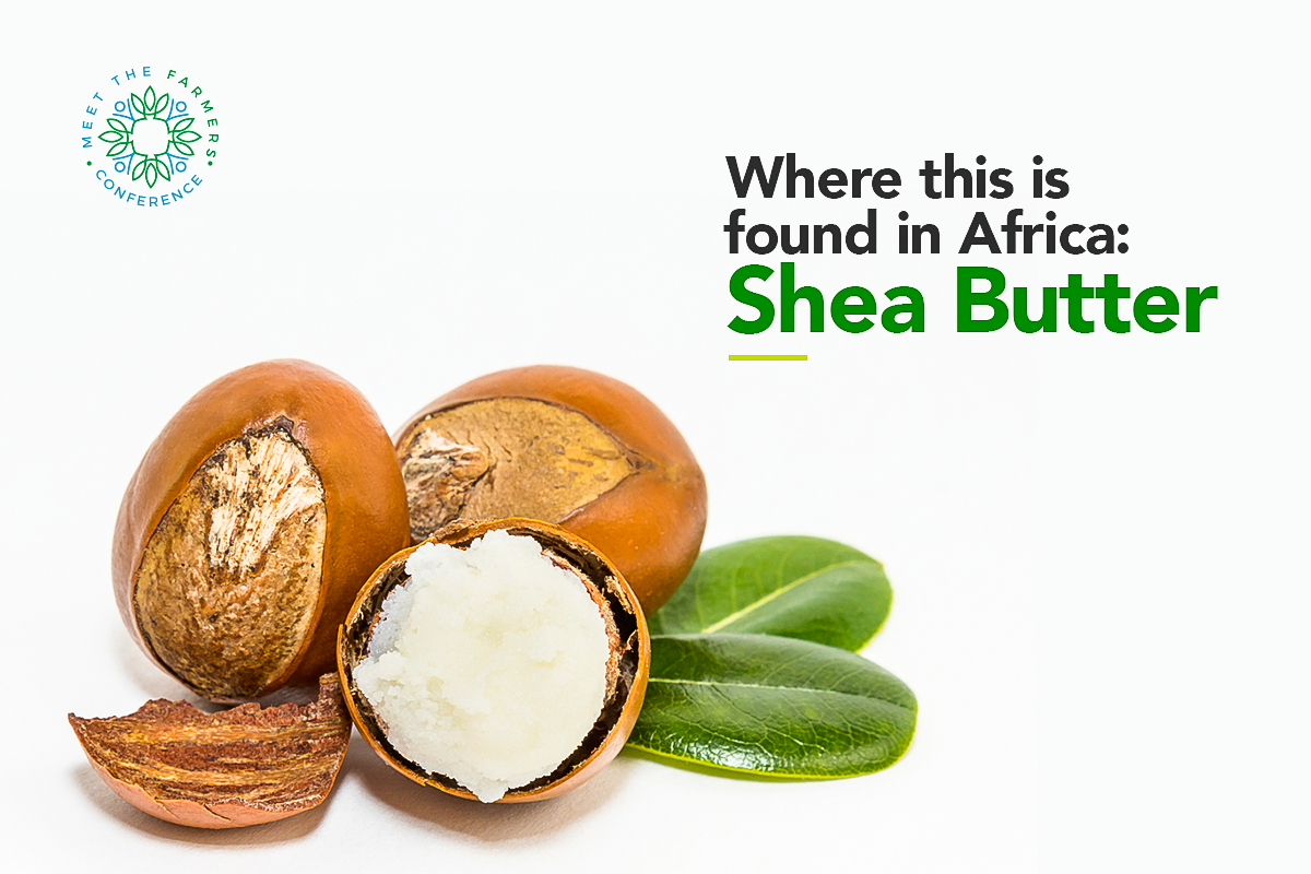 Where this is found in Africa: Shea Butter